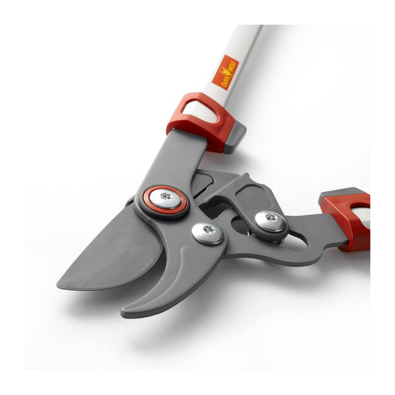 S cateur wolf os750 for Wolf outils jardinage prix