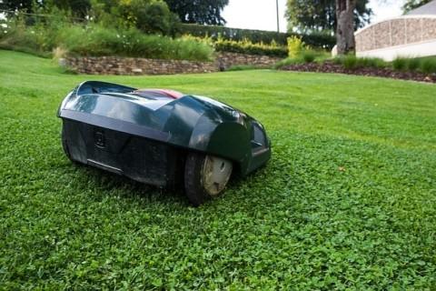 Redonnez vie à votre pelouse en toute simplicité avec une tondeuse automatique