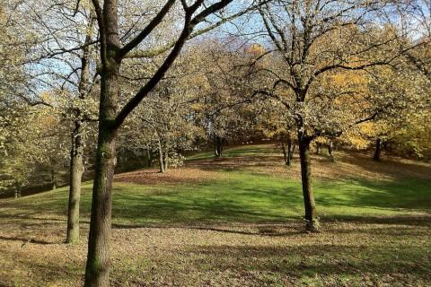 Fiche métier : être agent en espaces verts