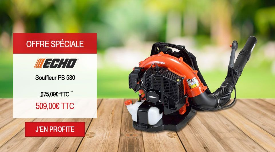Offre promo Souffleur Echo thermique PB580