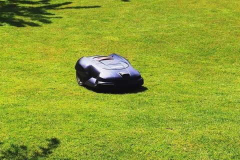 Le robot-tondeuse, votre allié pour un jardin splendide