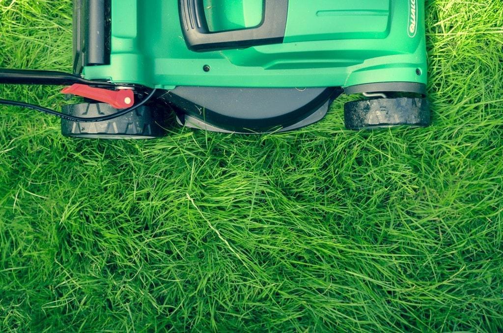 Tondre la pelouse : les règles à respecter