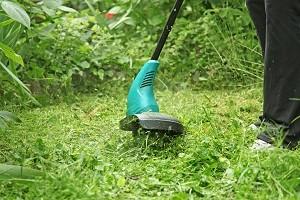 Taille de gazon avec un coupe-herbe