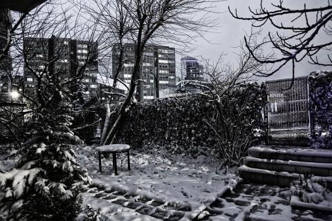 Entretenir son jardin pour l'hiver
