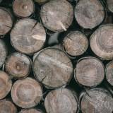 decouper-bois-en-hiver tronconneuse