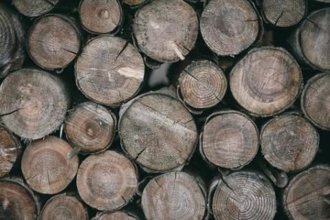 Quelles précautions pour découper son bois en hiver ?