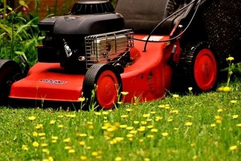 Choisir une tondeuse adaptée à votre jardin