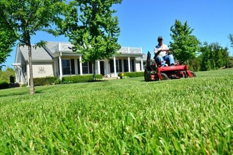 Comment s'occuper efficacement de mon jardin en juin ?