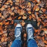 Souffleur Que faire de mes feuilles mortes