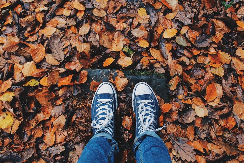 Souffleur: Que faire de mes feuilles mortes?
