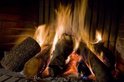 Quels bois de mon jardin est compatible avec ma cheminée?