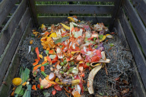 faire-compost-dechets