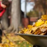 preparer-jardin-potager-hiver
